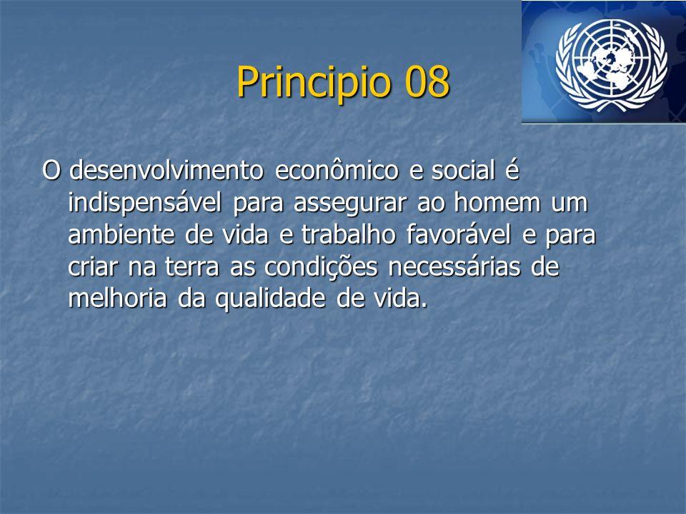 Principio 08