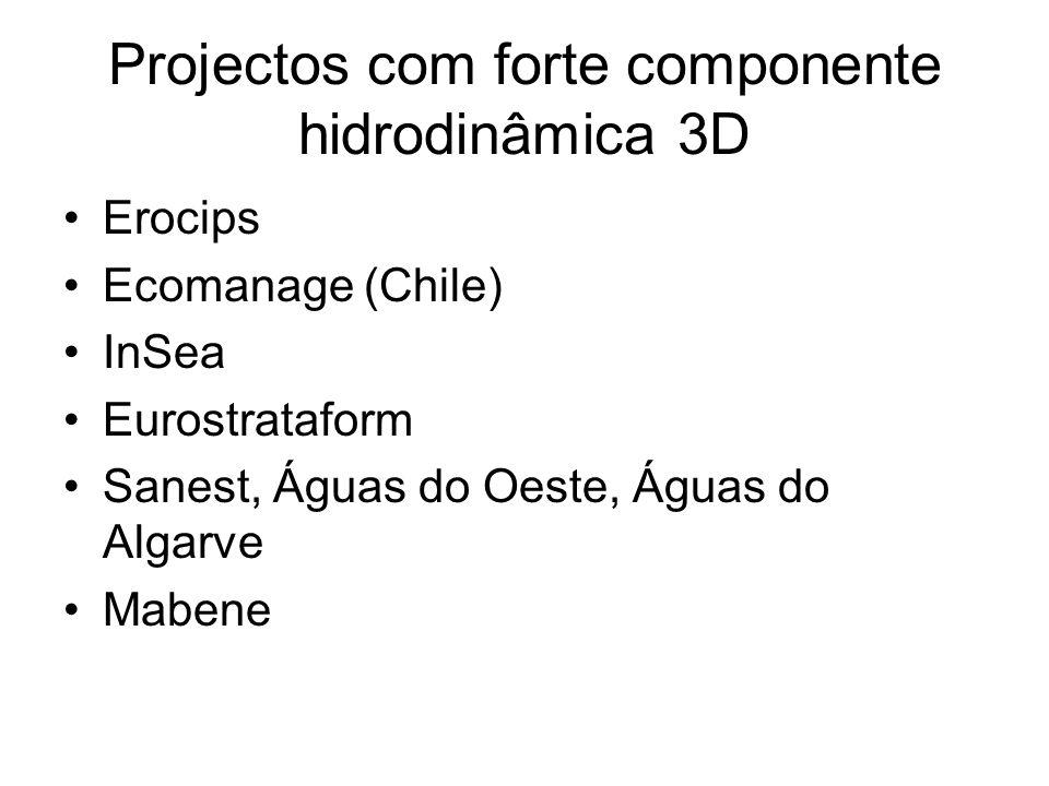 Projectos com forte componente hidrodinâmica 3D
