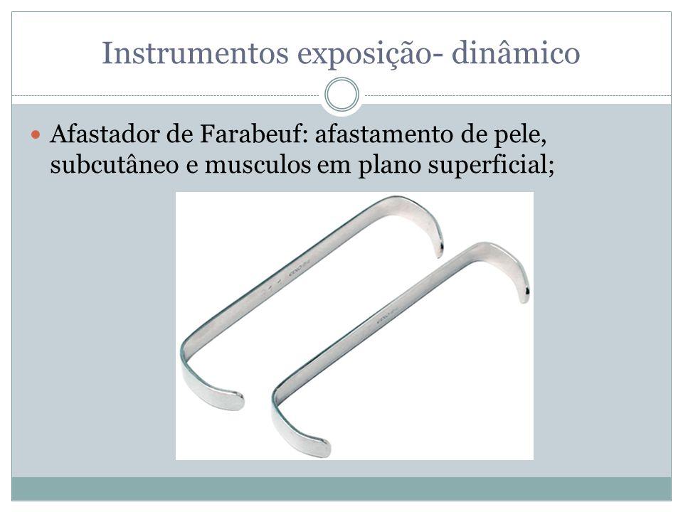 Instrumentos exposição- dinâmico