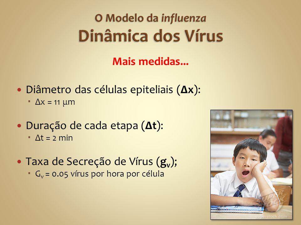 O Modelo da influenza Dinâmica dos Vírus