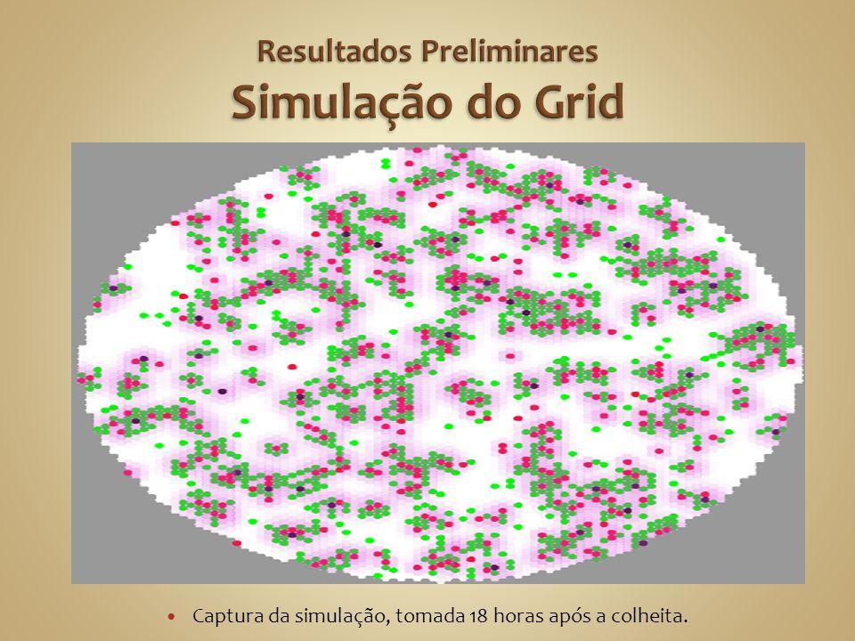 Resultados Preliminares Simulação do Grid