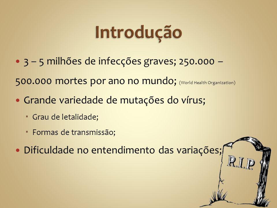 Introdução 3 – 5 milhões de infecções graves; 250.000 – 500.000 mortes por ano no mundo; (World Health Organization)