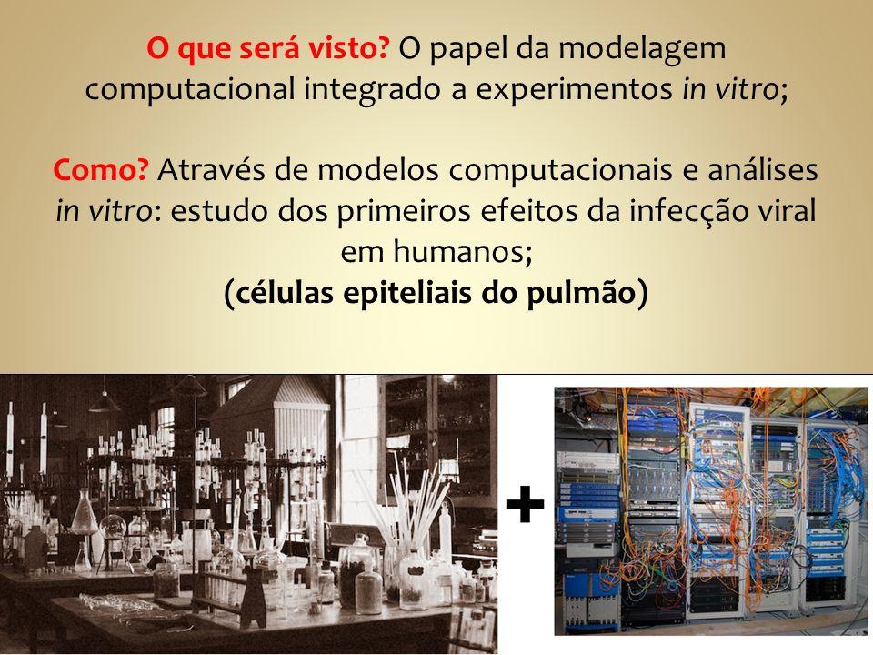 O que será visto. O papel da modelagem computacional integrado a experimentos in vitro; Como.