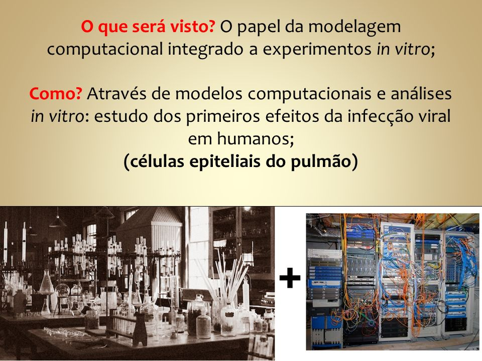 O que será visto.O papel da modelagem computacional integrado a experimentos in vitro; Como.