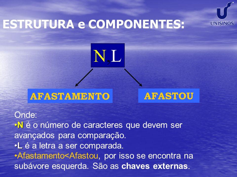 ESTRUTURA e COMPONENTES: