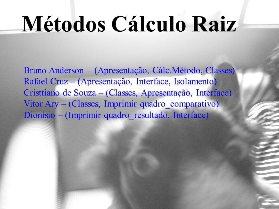 Métodos Cálculo Raiz Bruno Anderson – (Apresentação, Cálc.Método, Classes) Rafael Cruz – (Apresentação, Interface, Isolamento)