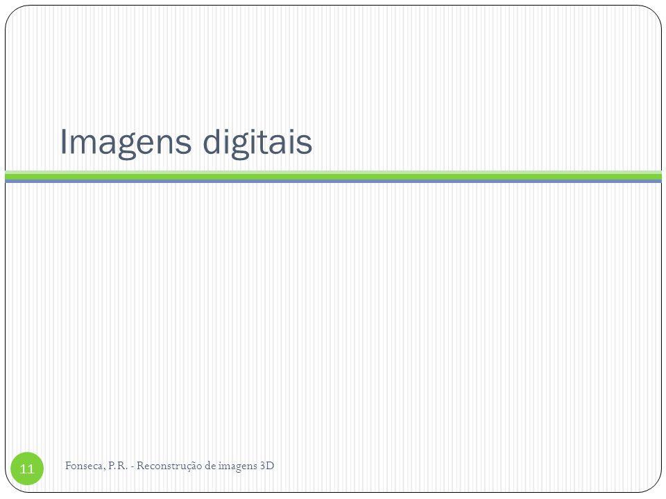 Imagens digitais Fonseca, P.R. - Reconstrução de imagens 3D