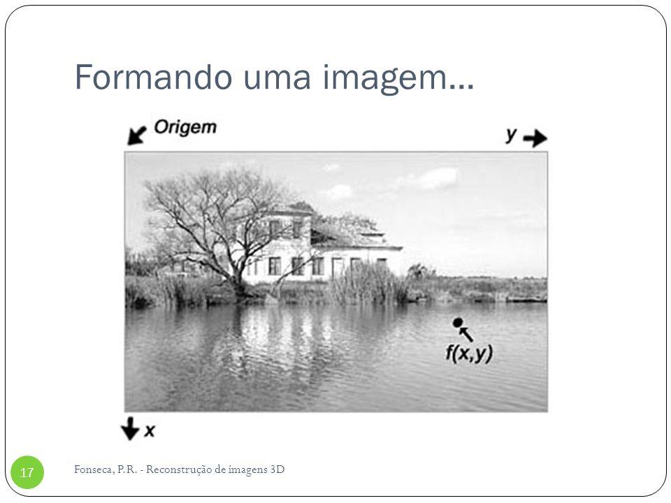 Formando uma imagem... Fonseca, P.R. - Reconstrução de imagens 3D