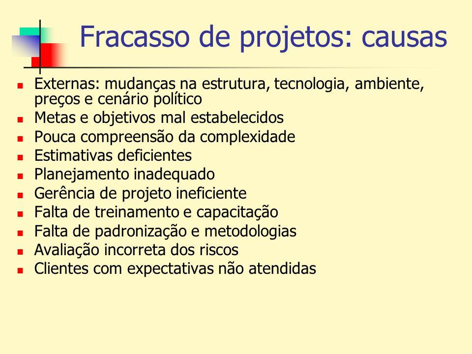 Fracasso de projetos: causas