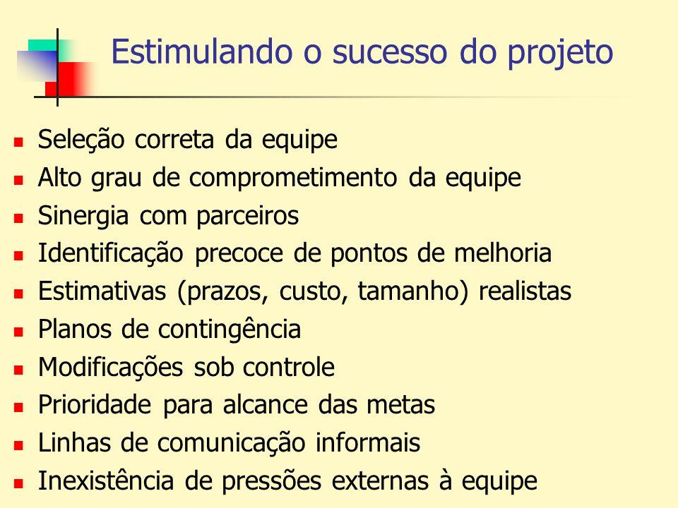 Estimulando o sucesso do projeto