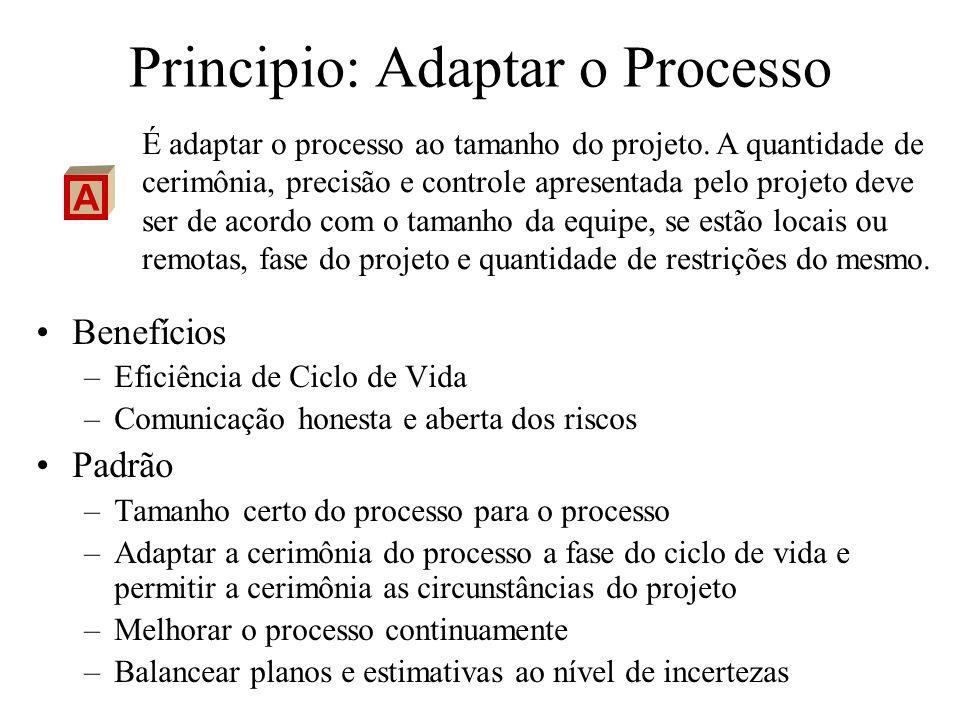 Principio: Adaptar o Processo