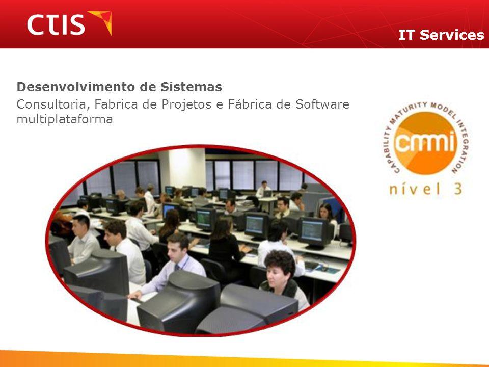 IT Services Desenvolvimento de Sistemas