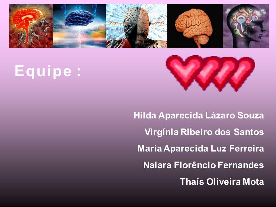 E q u i p e : Hilda Aparecida Lázaro Souza Virgínia Ribeiro dos Santos