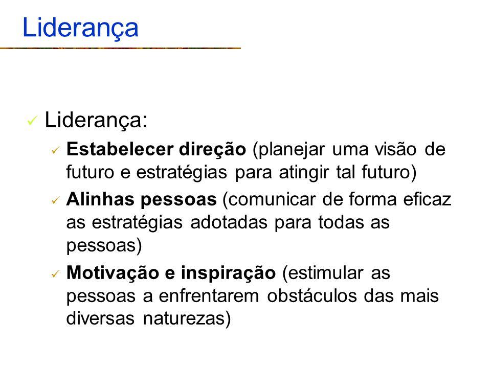 Liderança Liderança: Estabelecer direção (planejar uma visão de futuro e estratégias para atingir tal futuro)