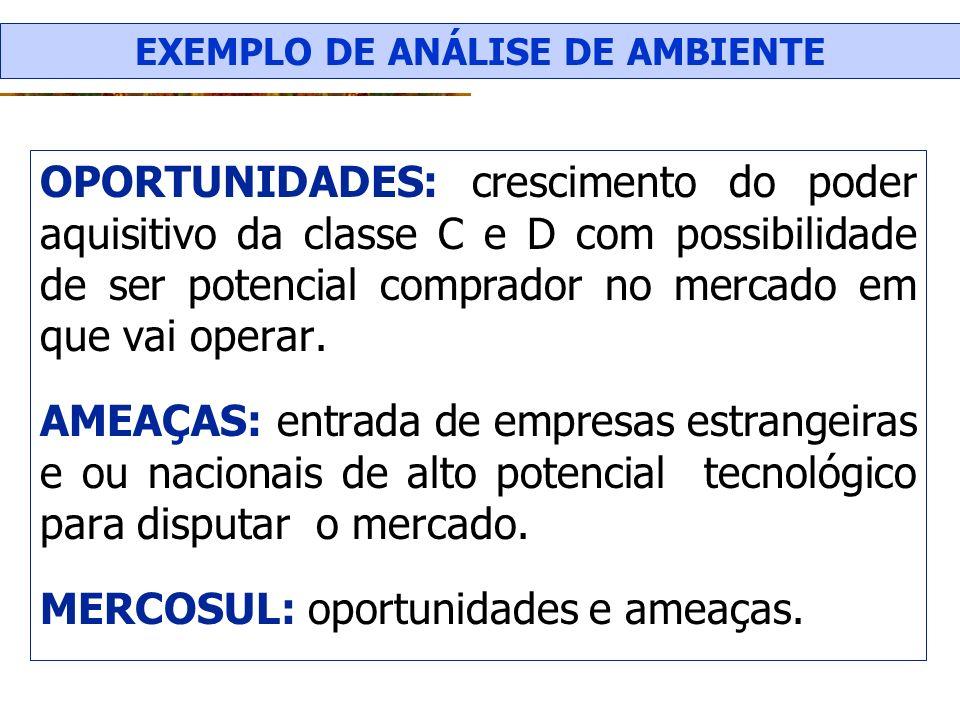 EXEMPLO DE ANÁLISE DE AMBIENTE