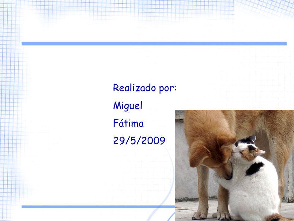Realizado por: Miguel Fátima 29/5/2009