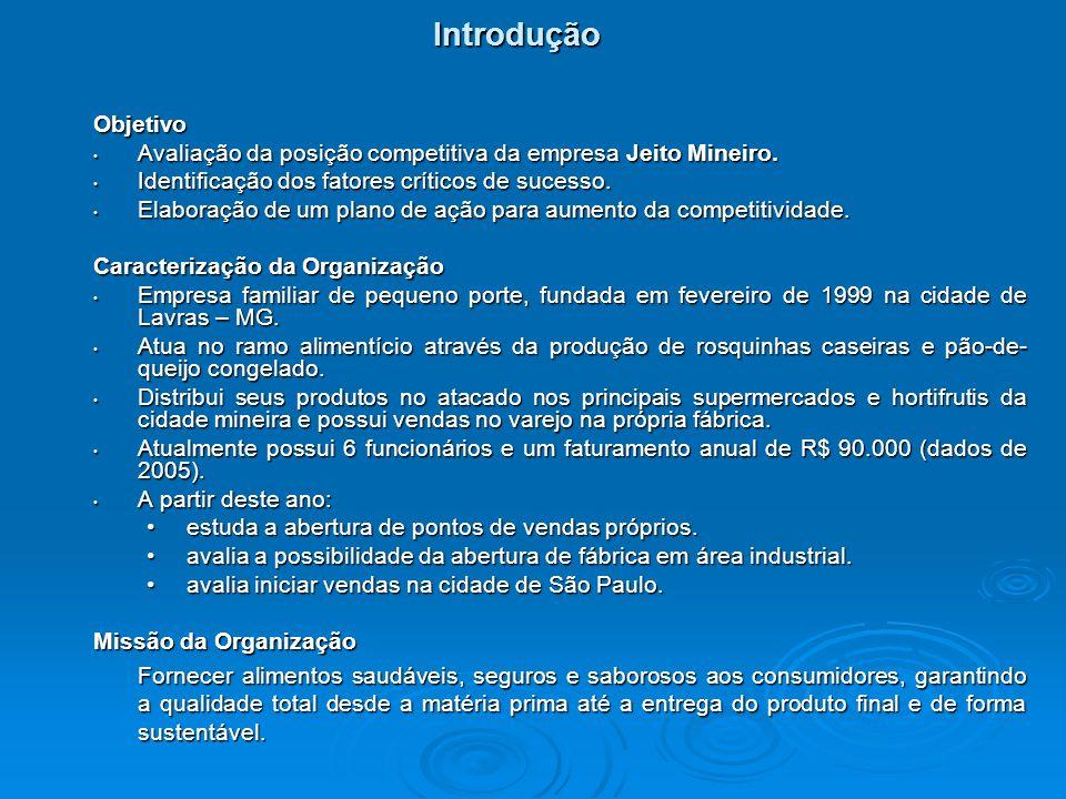 Introdução Objetivo. Avaliação da posição competitiva da empresa Jeito Mineiro. Identificação dos fatores críticos de sucesso.