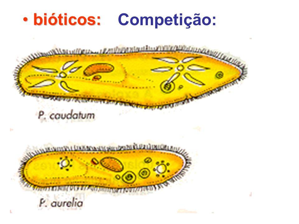 bióticos: Competição: