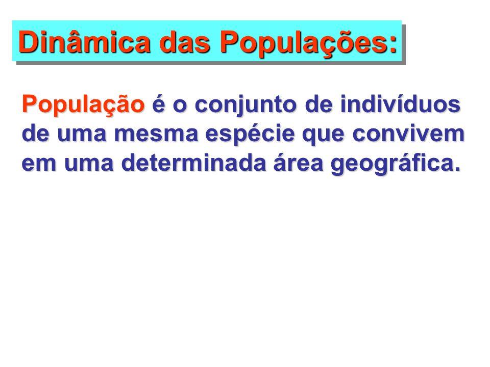 Dinâmica das Populações: