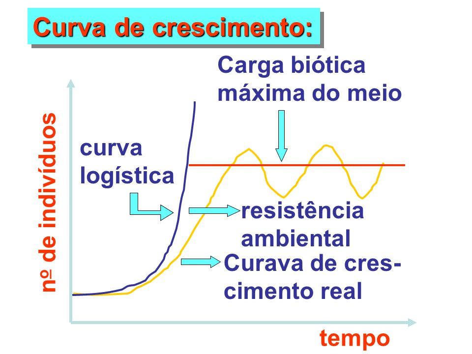 Curva de crescimento: Carga biótica máxima do meio curva logística