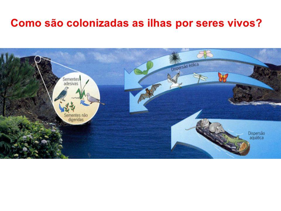 Como são colonizadas as ilhas por seres vivos