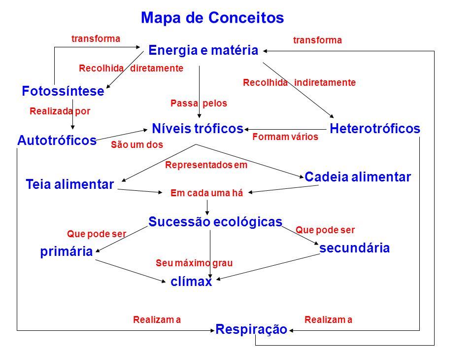 Mapa de Conceitos Energia e matéria Fotossíntese Níveis tróficos