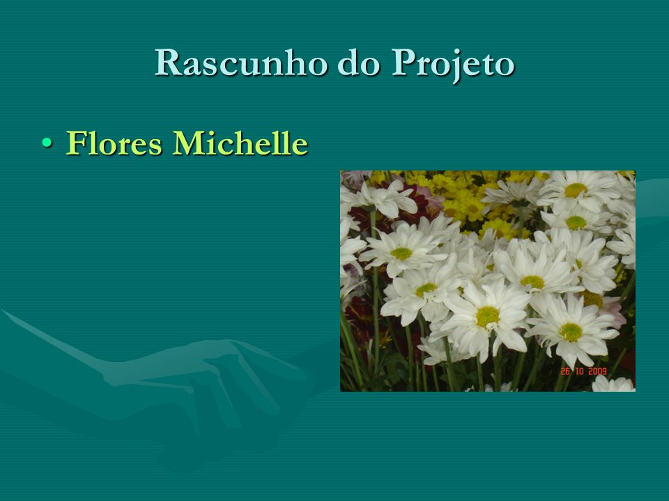 Rascunho do Projeto Flores Michelle