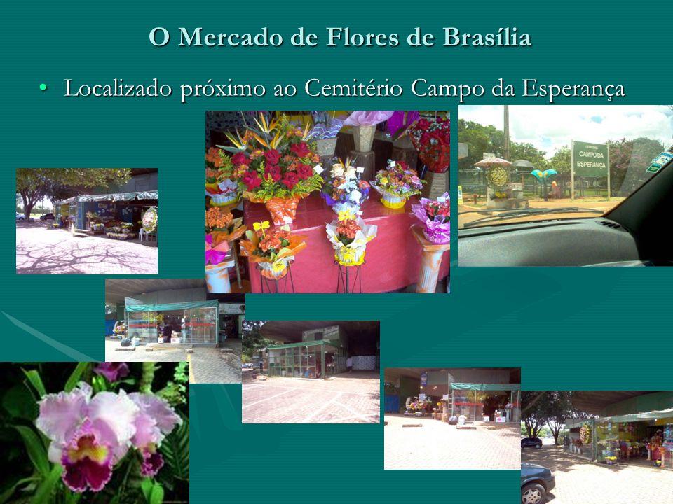 O Mercado de Flores de Brasília