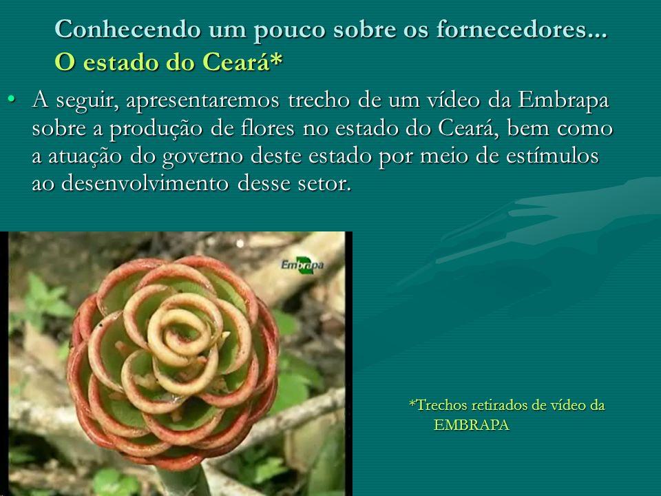 Conhecendo um pouco sobre os fornecedores... O estado do Ceará*