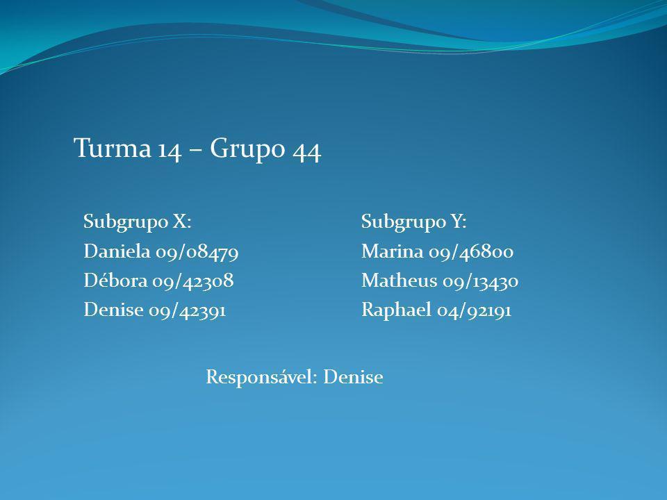 Subgrupo X: Daniela 09/08479 Débora 09/42308 Denise 09/42391