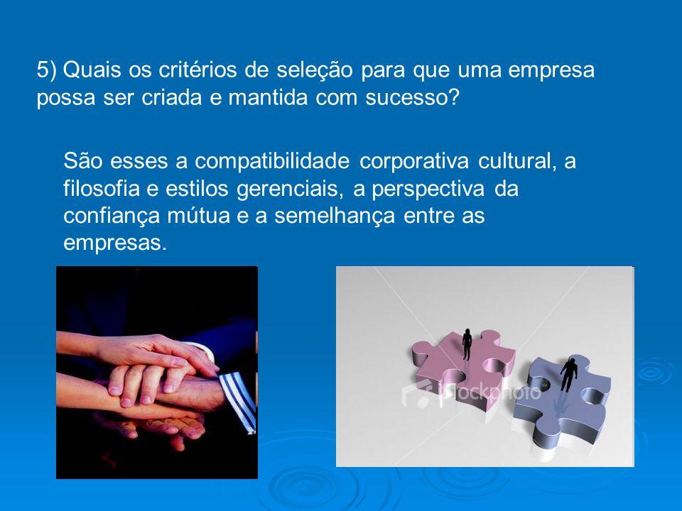 5) Quais os critérios de seleção para que uma empresa possa ser criada e mantida com sucesso