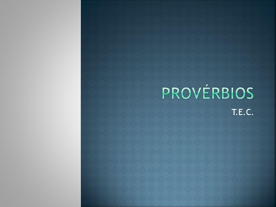 Provérbios T.E.C.