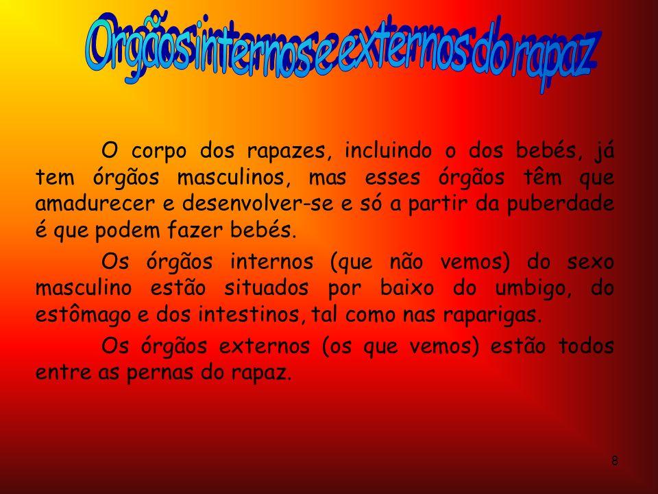 Orgãos internos e externos do rapaz