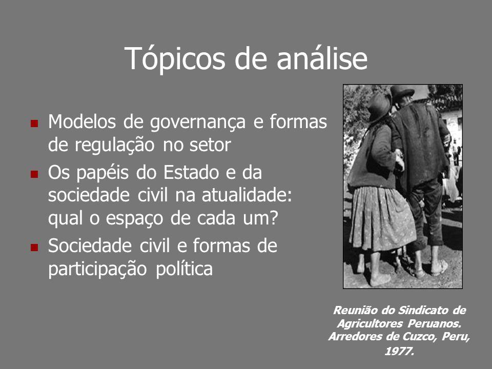 Tópicos de análise Modelos de governança e formas de regulação no setor.