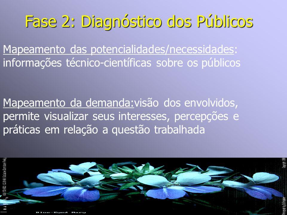 Fase 2: Diagnóstico dos Públicos