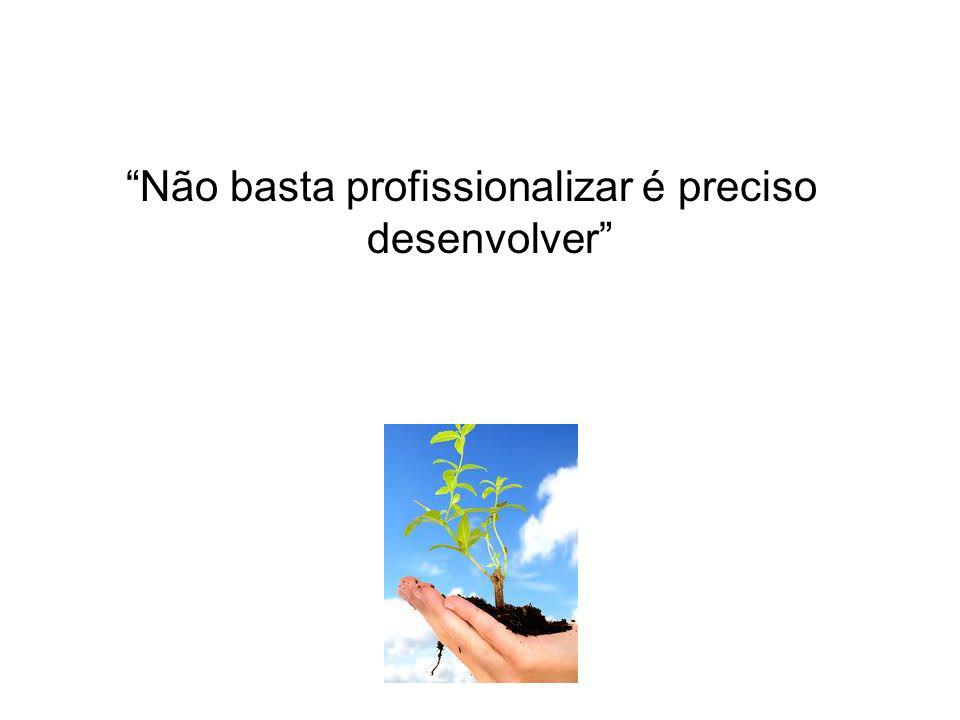 Não basta profissionalizar é preciso desenvolver