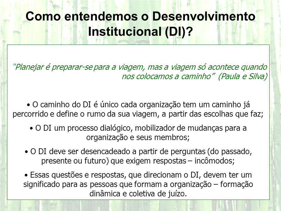 Como entendemos o Desenvolvimento Institucional (DI)