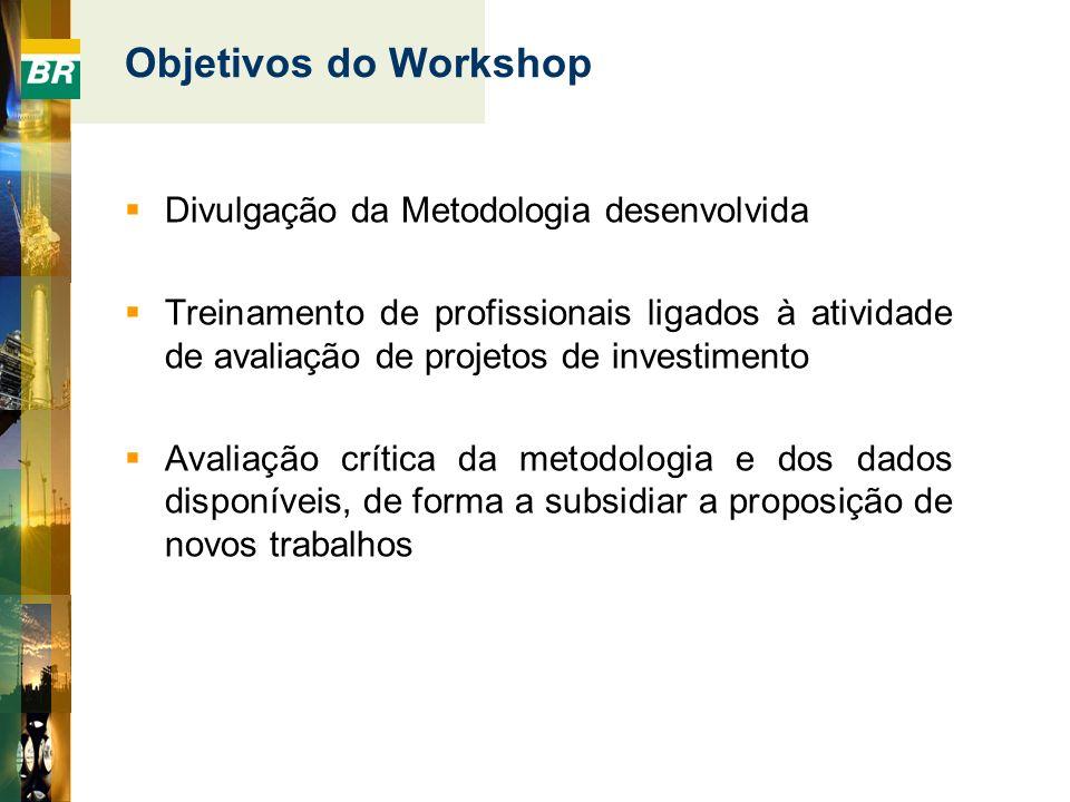 Objetivos do Workshop Divulgação da Metodologia desenvolvida