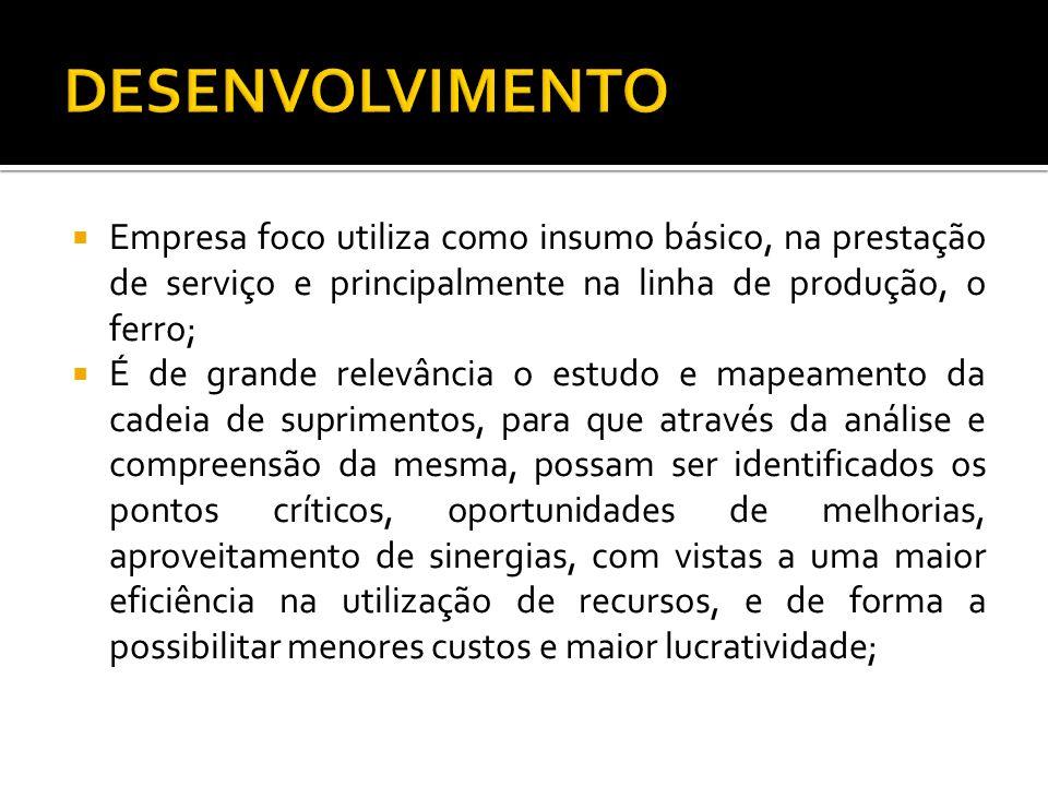DESENVOLVIMENTO Empresa foco utiliza como insumo básico, na prestação de serviço e principalmente na linha de produção, o ferro;