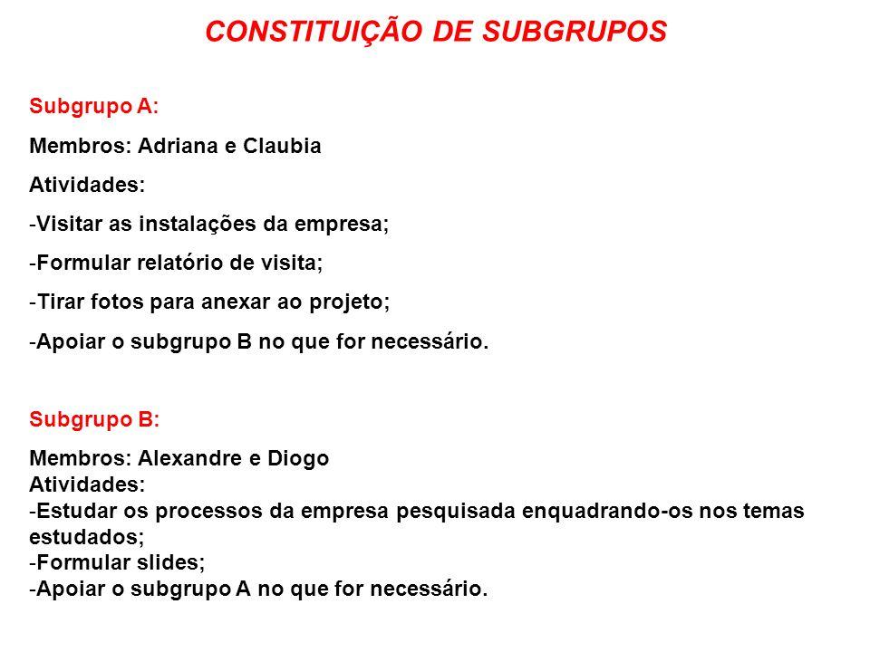 CONSTITUIÇÃO DE SUBGRUPOS
