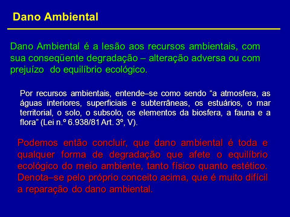 Dano Ambiental