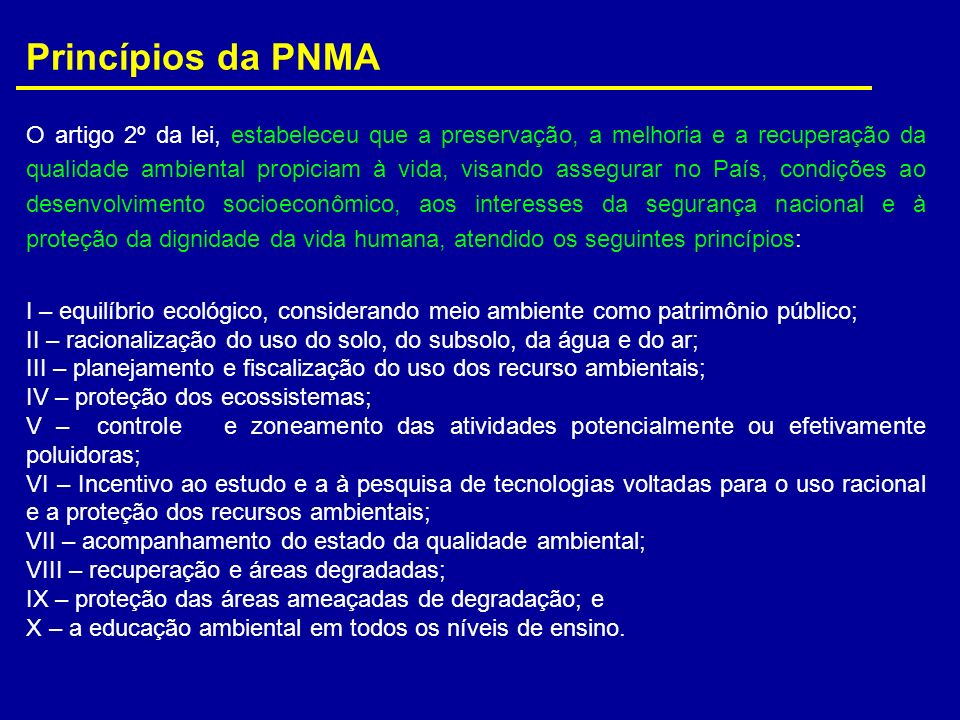Princípios da PNMA