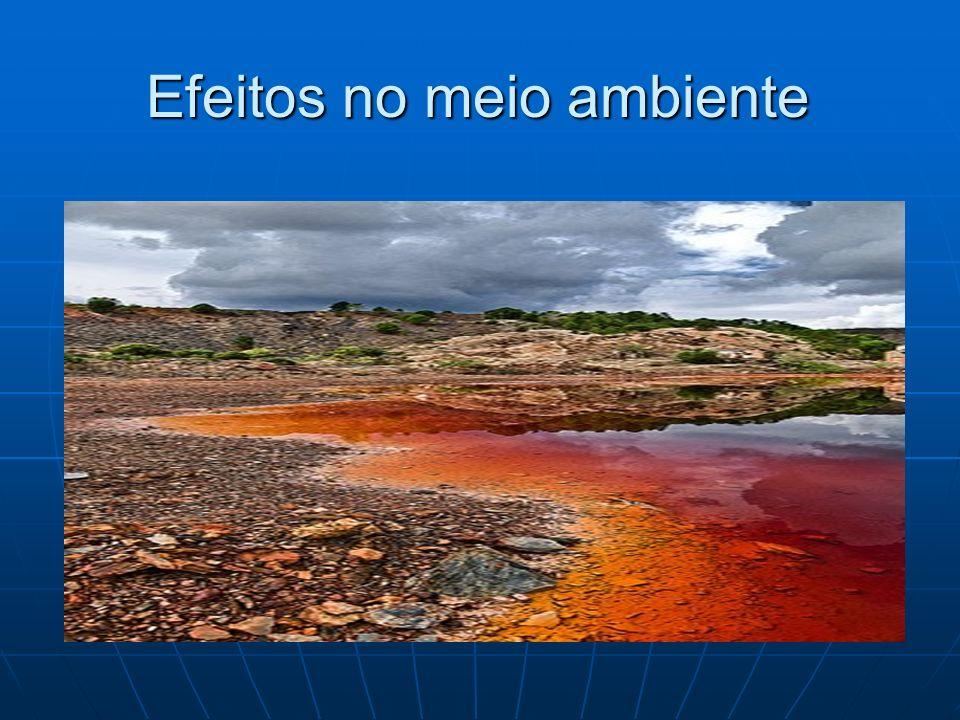 Efeitos no meio ambiente