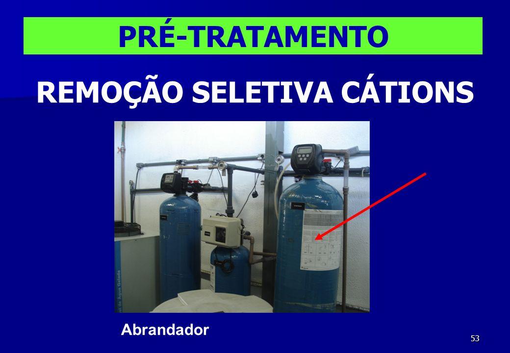 REMOÇÃO SELETIVA CÁTIONS