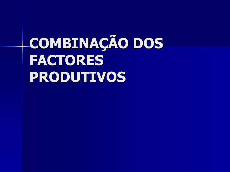 COMBINAÇÃO DOS FACTORES PRODUTIVOS