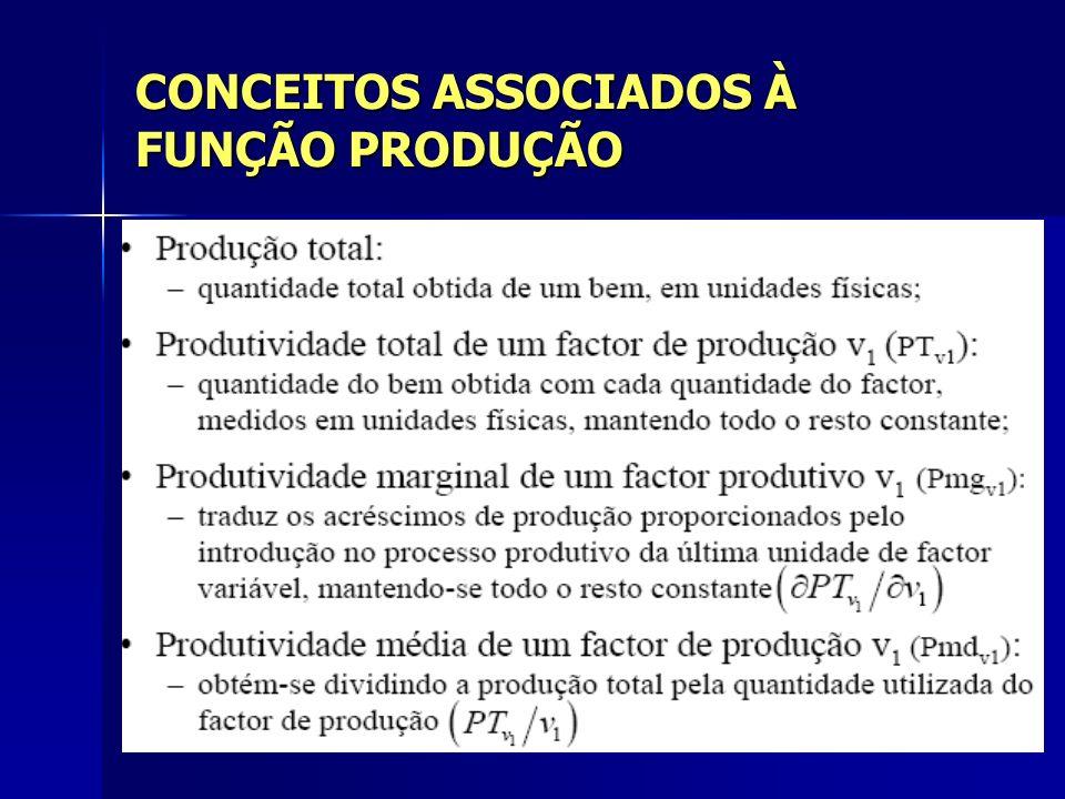 CONCEITOS ASSOCIADOS À FUNÇÃO PRODUÇÃO