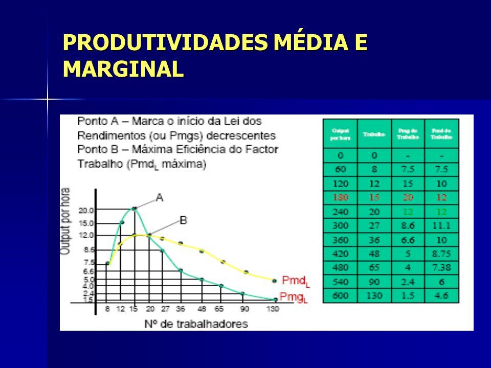 PRODUTIVIDADES MÉDIA E MARGINAL