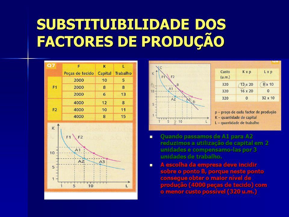 SUBSTITUIBILIDADE DOS FACTORES DE PRODUÇÃO