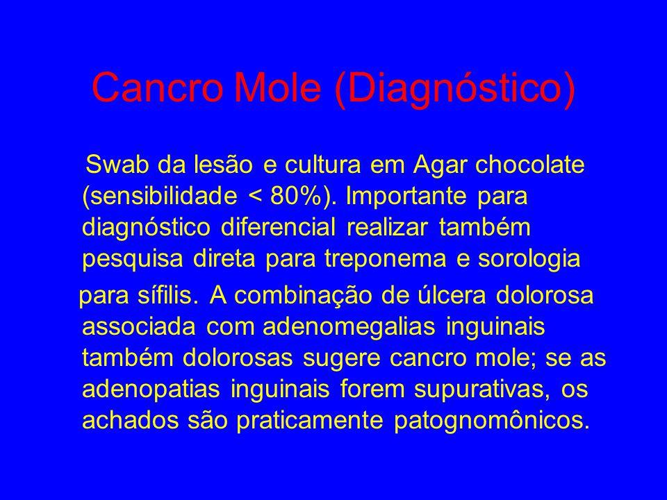 Cancro Mole Agente: Haemophylus ducrey Incubação : 3 a 5