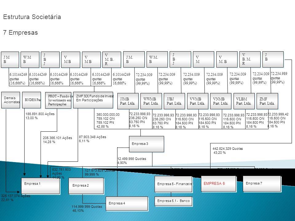 Estrutura Societária 7 Empresas